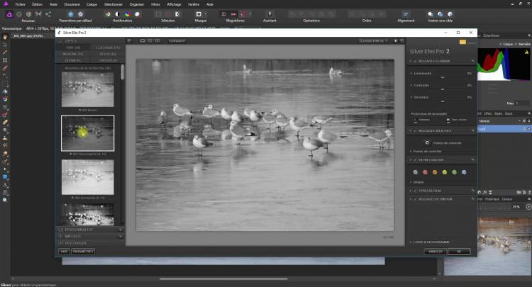 Ajouter des modules Photoshop dans Affinity Photo